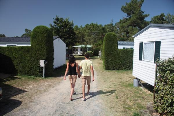 Un camping où reigne le calme en Vendée