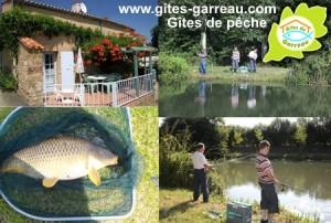Gîtes de pêche sur étang privé 1/2 hectare et local technique - Domaine de Garreau