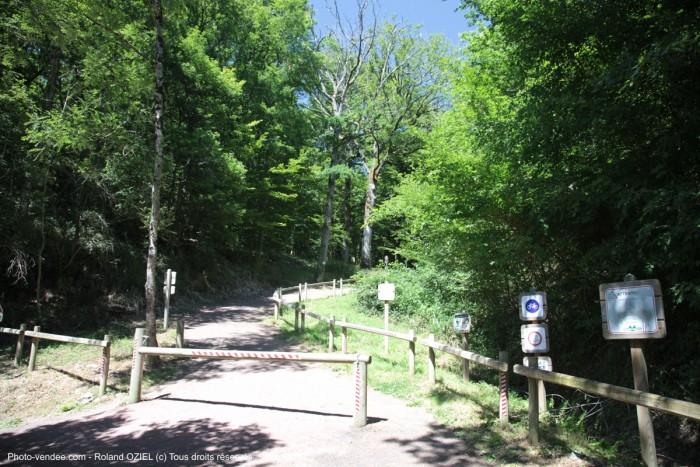 Circuit touristique en forêt de Mervent