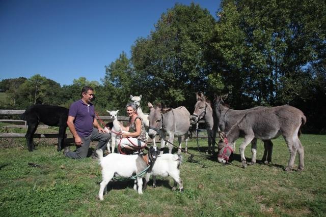 Gite nature et écologique en Vendée
