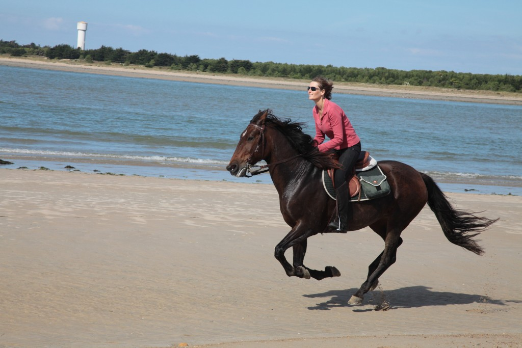 Balades equestres en Vendée au bord de la plage gites equestres